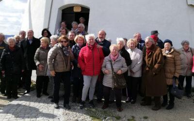 Silberlöwen zu Gast auf Schloss Ruegers